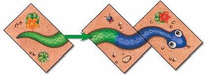 Wąż musi składać się minimum z 3 części - Serpentyna Kolorowe węże